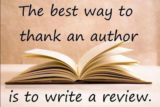 how to write a novel review